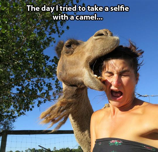 When selfies don't go as expected…