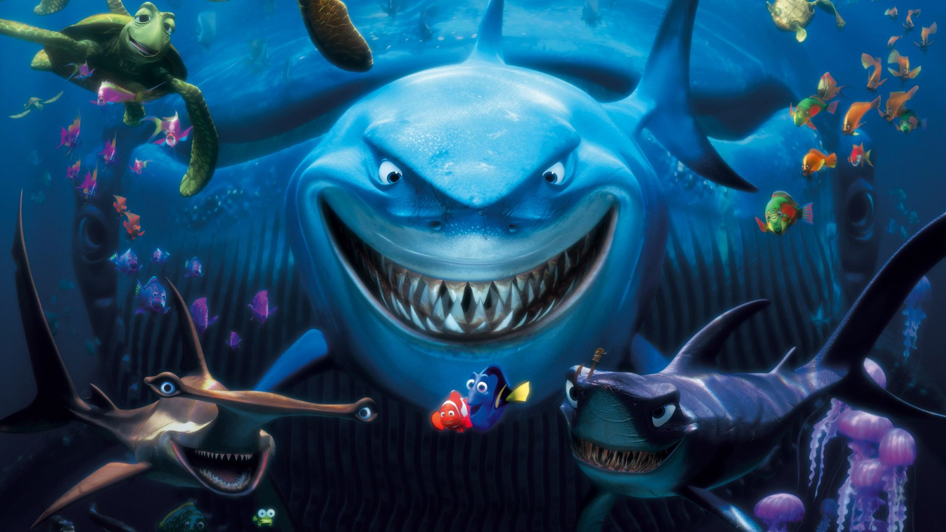 Finding Nemo D Animasi Hd Wallpaper: Free Download Latest Finding