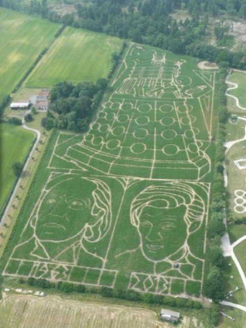 Doctor Who Crop Circles!!!!