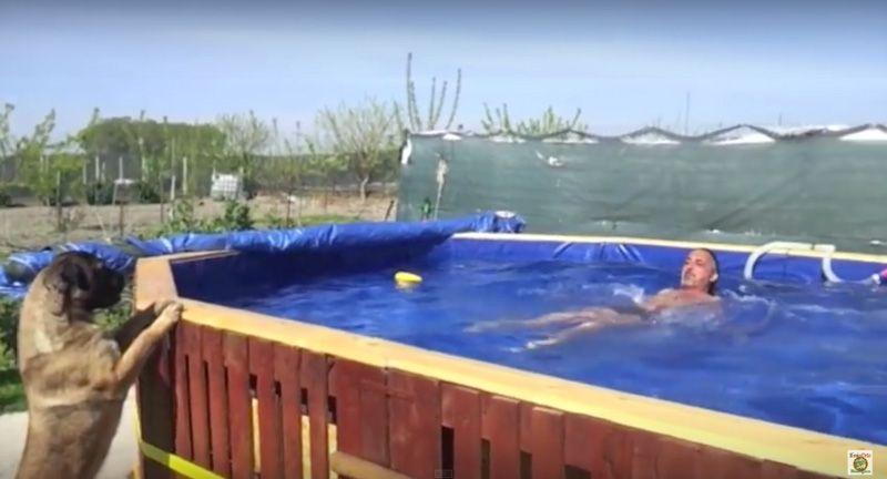 vid os avec les instructions pour construire une piscine avec palettes swimming pools pallets. Black Bedroom Furniture Sets. Home Design Ideas