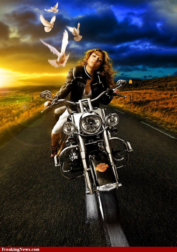 Jessica Alba Riding A Harley With Images Female Motorcycle