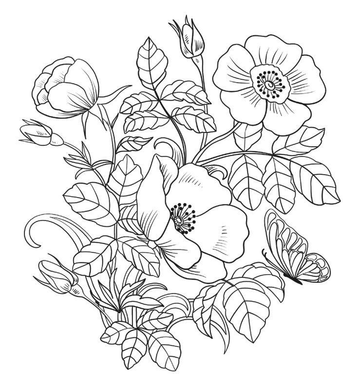 Картинки цветы печатать