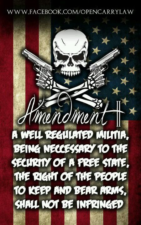 2nd Amendment Rights!!!!! ... And the home of the braaaaaave .