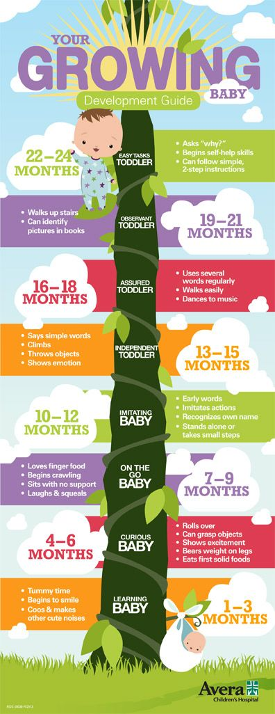 baby-development-infographic-largejpg 396×1,026 pixels busy - baby development chart