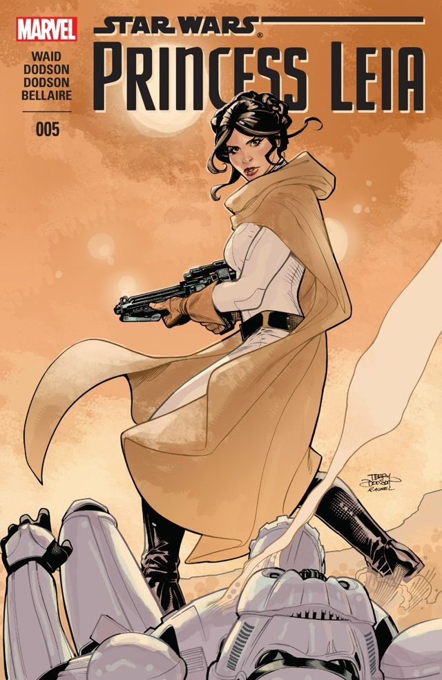 STAR WARS Movie PHOTO Print POSTER A New Hope Princess Leia Luke Skywalker 005
