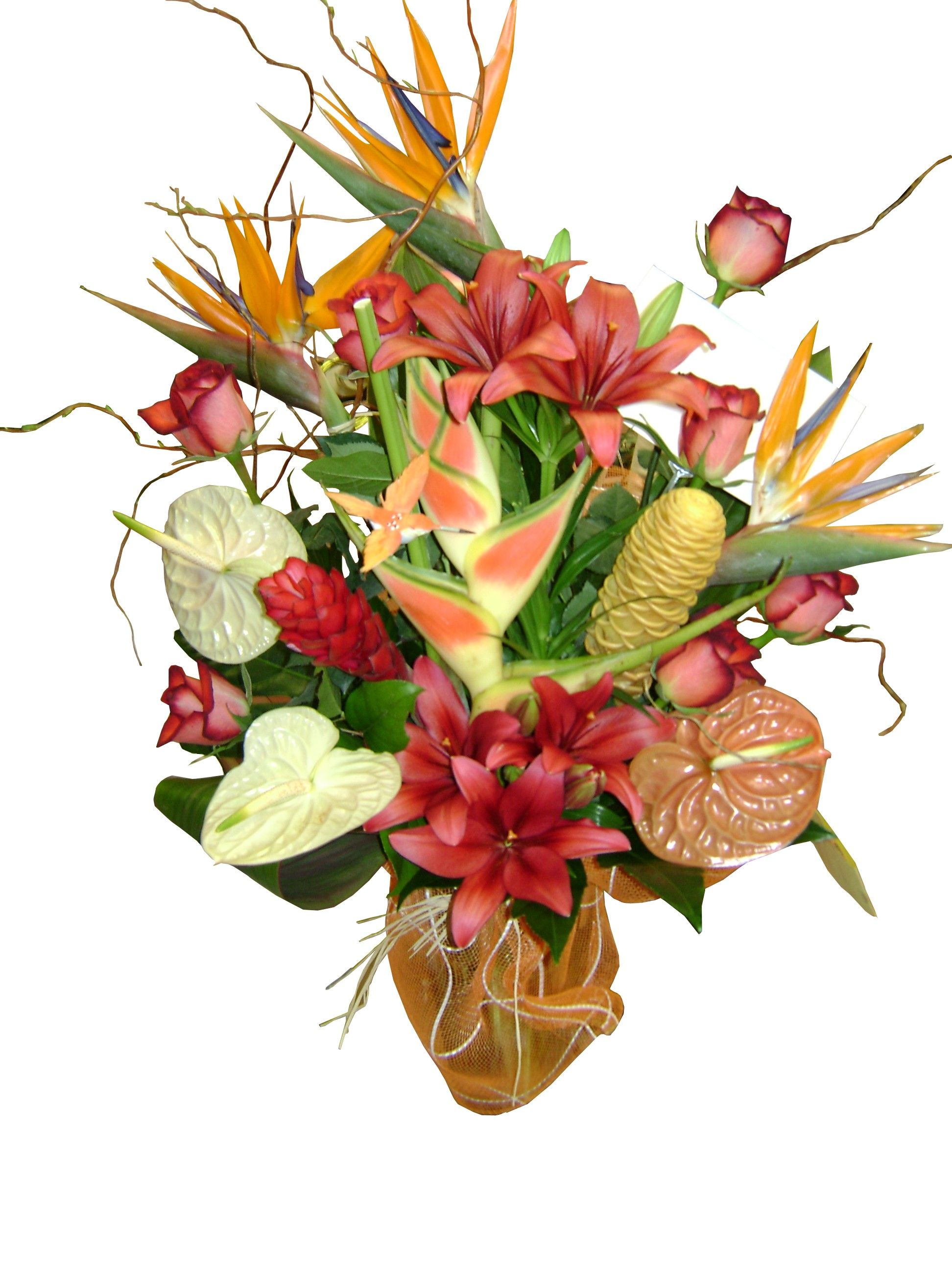 Tropical Flower Arrangement Stock Flower Images Pinterest