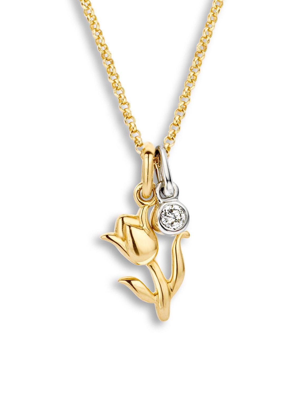 Symbols tulp