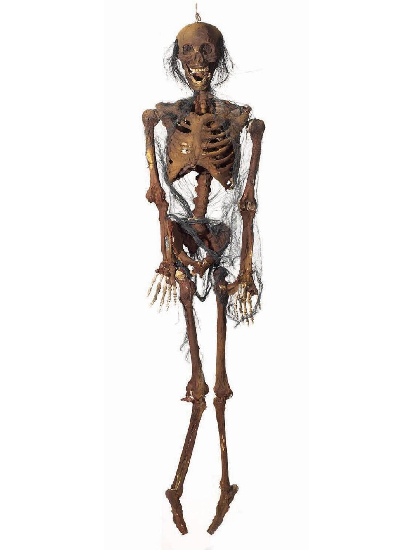 Hang.Zombie Full Body w/Lights Halloween props