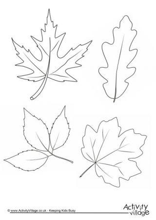 Autumn Leaves Colouring Page z papieru Leaf coloring