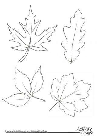 Autumn Colouring Pages Kenthmata Gia Paidia Fyllo