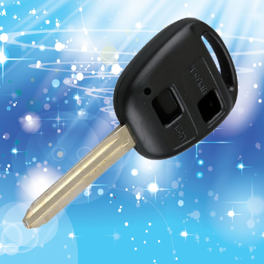 2016 Hotsale new 2 Buttons Black Replacement Entry Key