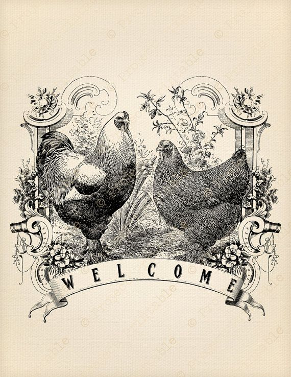 Instant Download Printable Chicken Welcome FARM Rooster Hen iron on ...