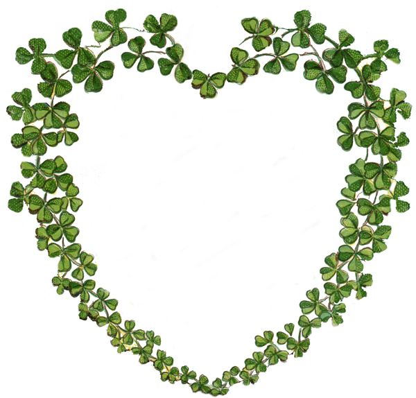 Image result for shamrocks for you images