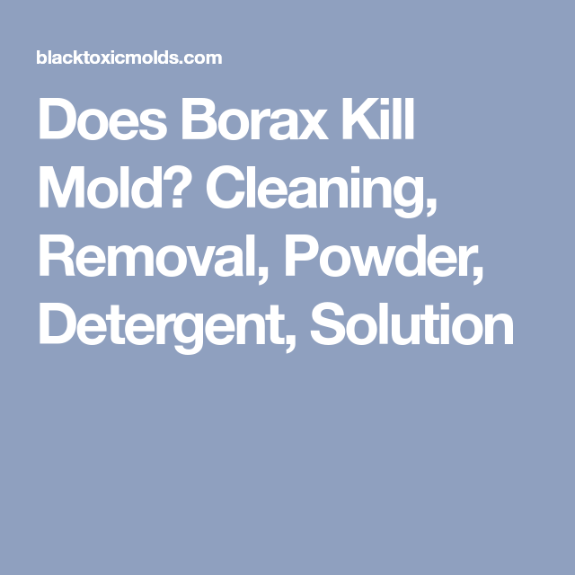 Does Borax Kill Mold Cleaning Removal Powder Detergent