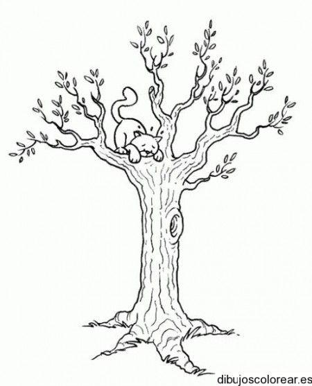 Dibujo De Un Gato Sobre Un Arbol Patrones De Lena Dibujo De Arbol Arte De Madera Ardiente