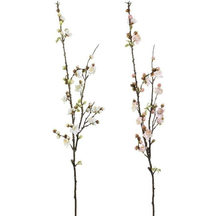 RAZ Cherry Blossom Bud Spray Set of 2 Assorted, set includes one of each style Made of Plastic Measures 36