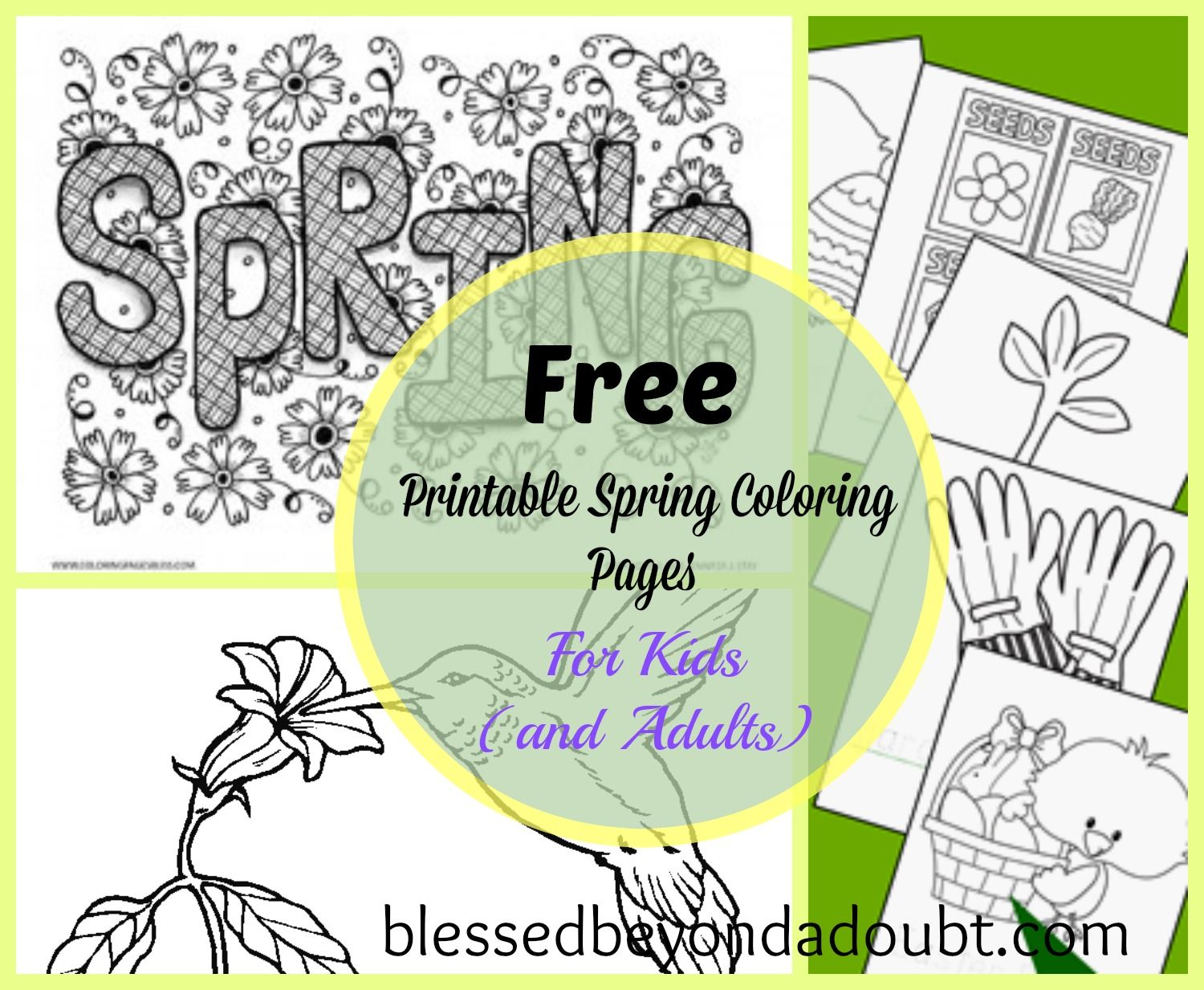 Spring coloring contest pages - 20 Free Printable Spring Coloring Sheets For Kids And Adults