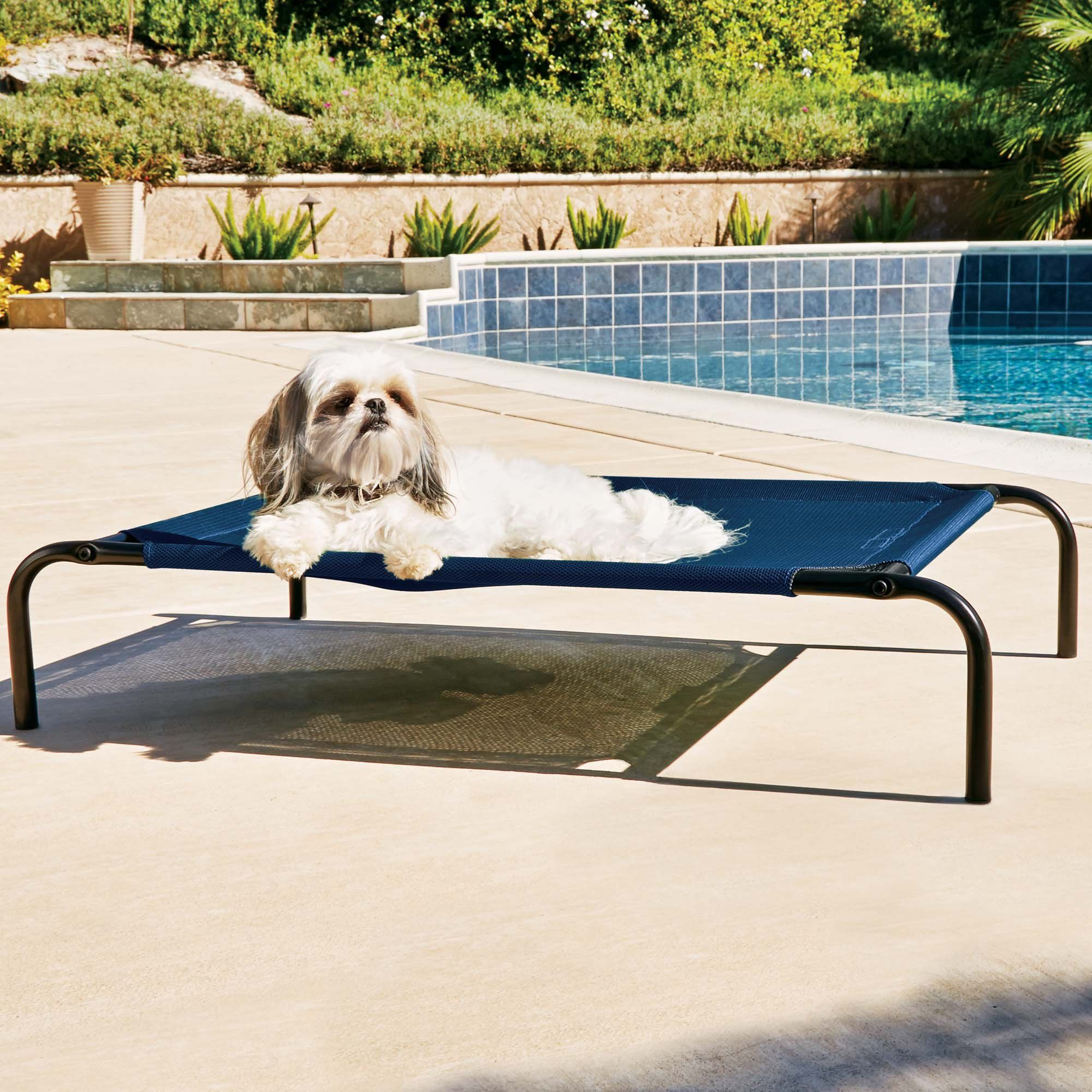 Good2go Cooling Cot For Dogs 32 X 24 Medium Blue Pet Travel