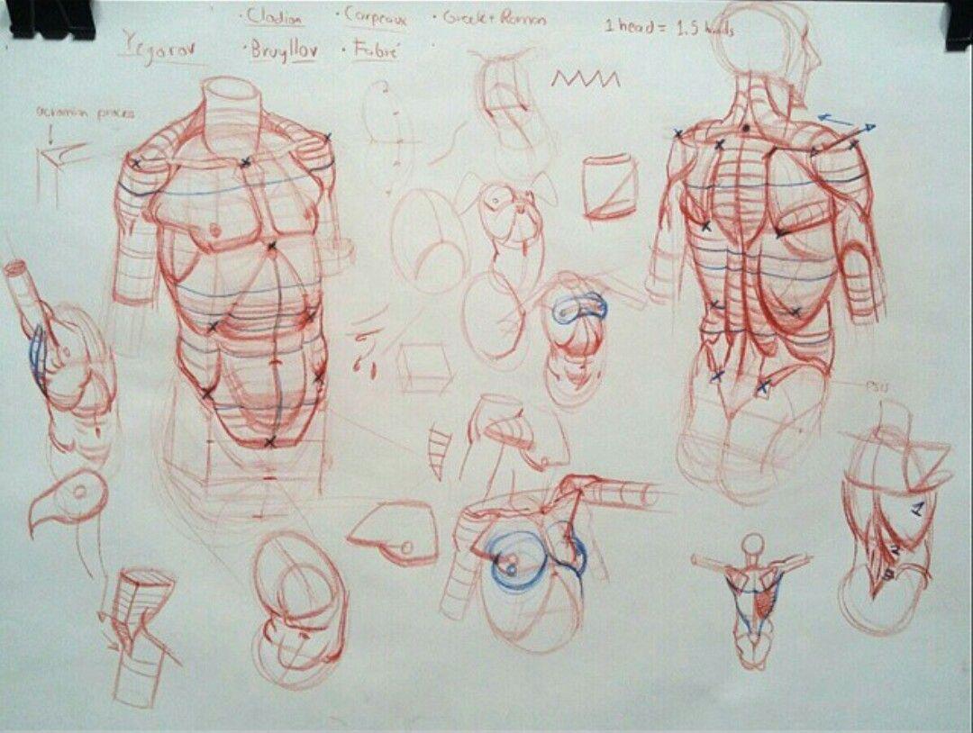 Pin von Keteinporta auf rh torso | Pinterest
