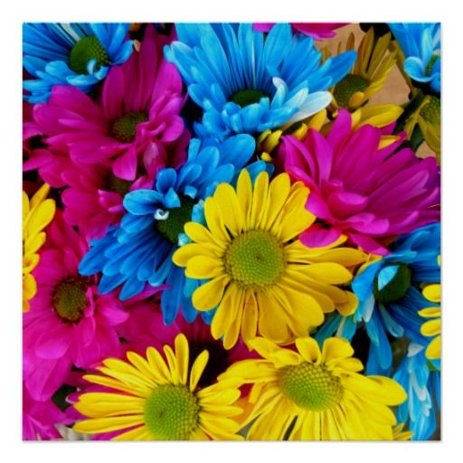 Trendy Colorful Pink Yellow Daisies Floral Pattern Poster