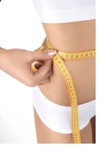 Fat Diminisher System By Wes Virgin Reviews