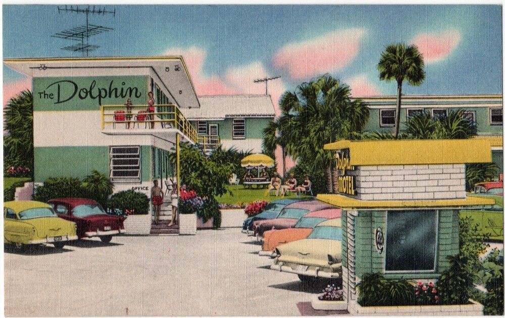 Vintage Florida Postcard The Dolphin Motel Daytona