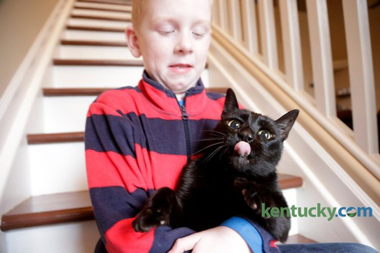 The Ober family of Lexington, Ky. was heartbroken when their cat, Salem, ran away right before they moved homes.