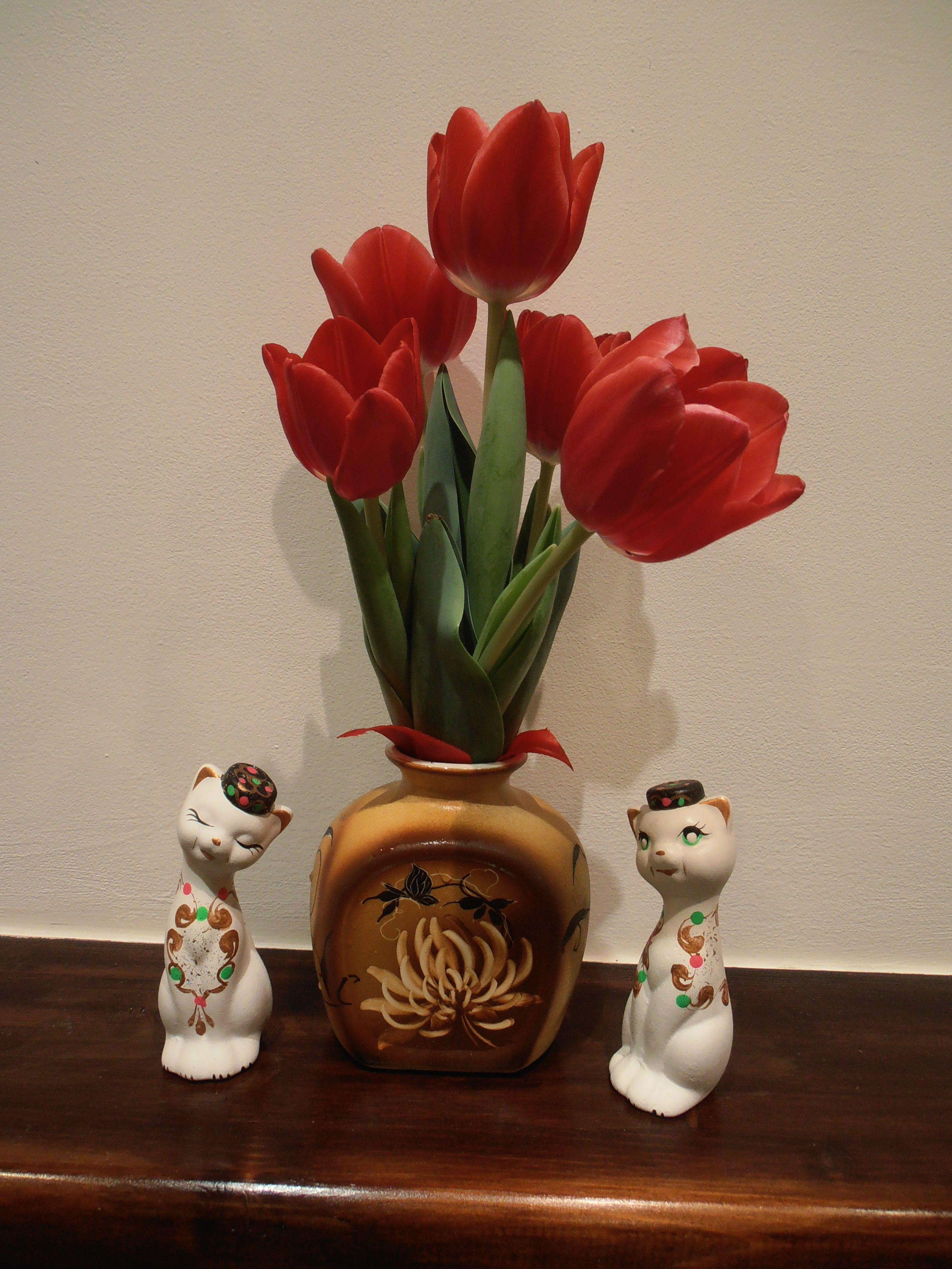 Цветы которых не знаешь фото