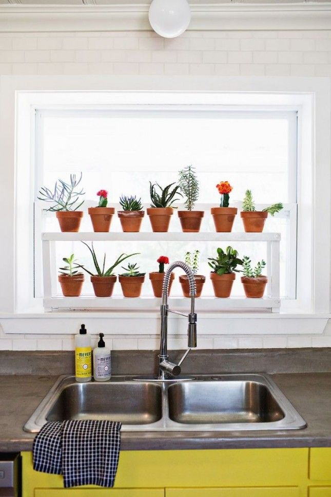 fill your kitchen window with herbs and succulents for the home rh pinterest com Open Kitchen Shelving Kitchen Sink Window Ideas