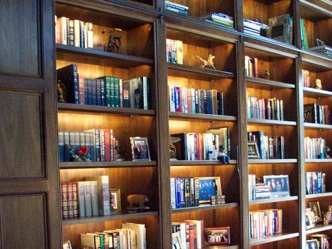 Illuminated Bookshelf Excellent For The Lower Level To Add Needed Light