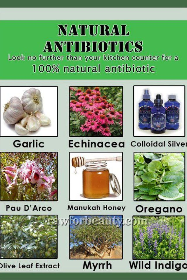 Natural Antibotics Raw for beauty