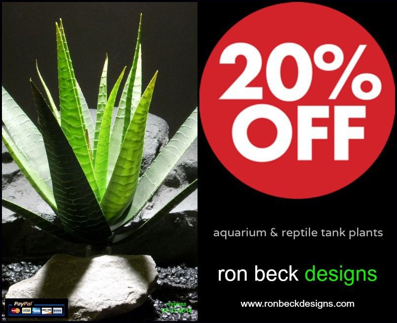 20% off entire purchase! use coupon code: ptrbd01 valid at: www.ronbeckdesigns.com  expires 07-31-2014 | feel free to re-pin this! 1 coupon per person. coupon has no cash value. worldwide shipping available. location: PA, USA | price range: $5.99 - $19.99 #ron_beck_designs #aquarium #aquarium_plants #reptile #reptile_enclosure #reptile #fish