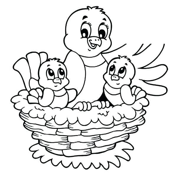 Baby Bird Coloring Page Birds In Nest Coloring Pages Printable Bird Coloring Pages Valentines Day Coloring Page Elmo Coloring Pages