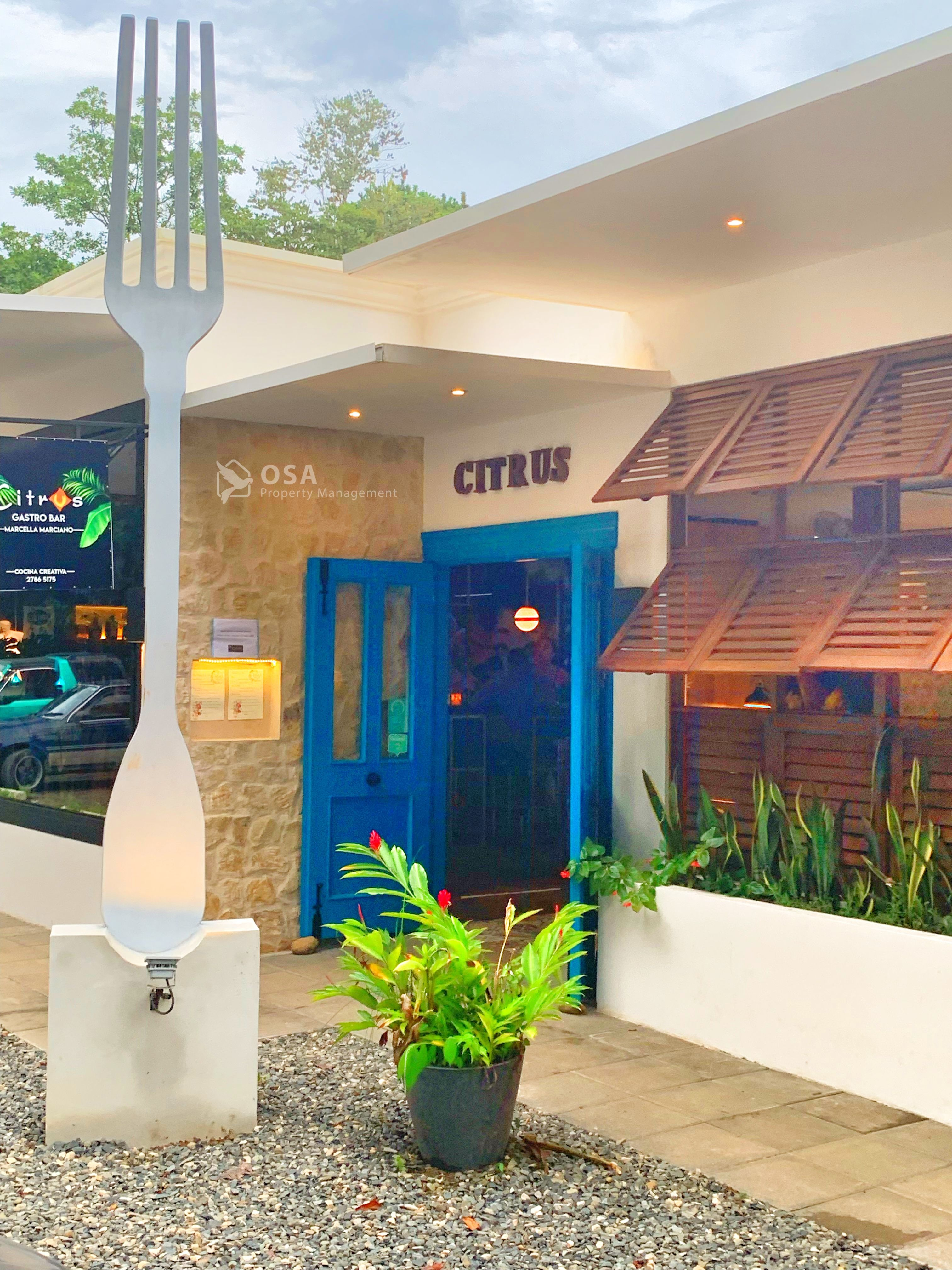 Citrus Restaurant In Ojochal Is Arguably The Best In The