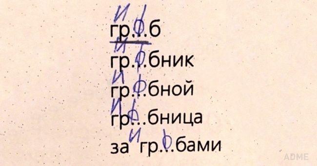 20 Genialnyh Otvetov Detej V Shkolnyh Tetradyah Samye Smeshnye Citaty Smeshnye Teksty Yumornye Citaty