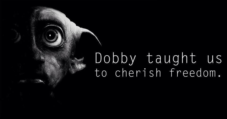 What I learned from Dobby