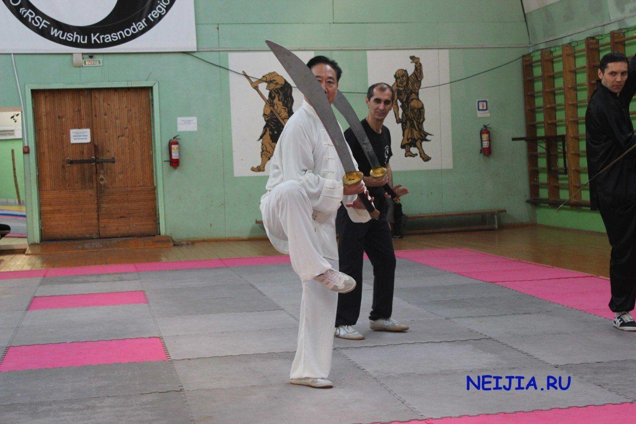 Семинар Ди Гоюна в Краснодаре 2014 – 26 фотографий