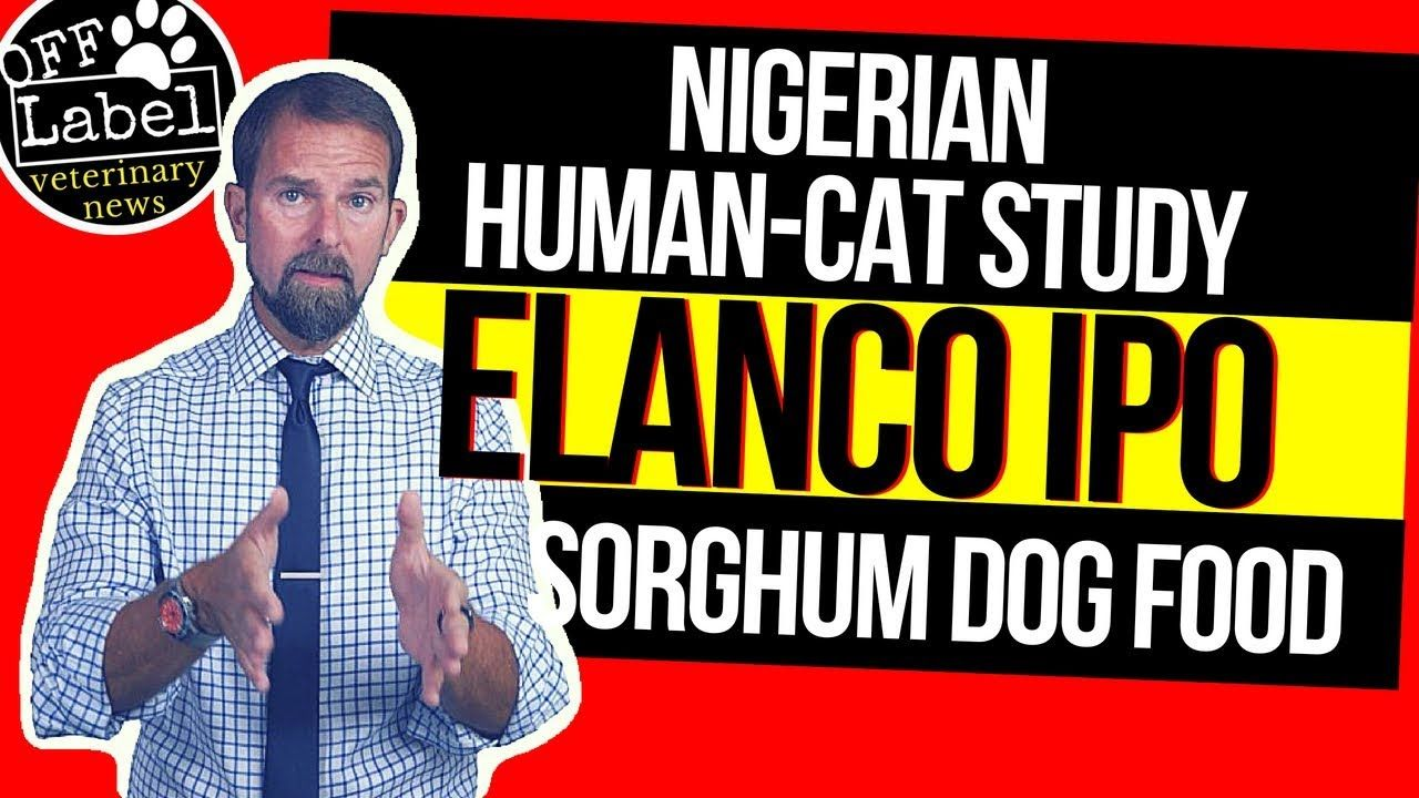 Elanco IPO, Nigerian HumanCat Relationships, Dog