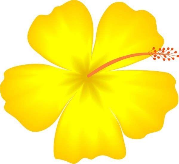 Dibujos Hawaianos E Imagenes Para Una Fiesta Infantil Dibujos Hawaianos Flor Hawaiana Dibujo Flores Para Dibujar