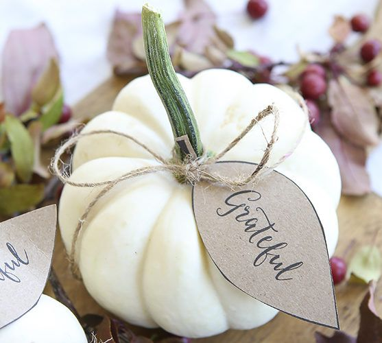 Most Good Looking Thanksgiving Decoration DIY Project