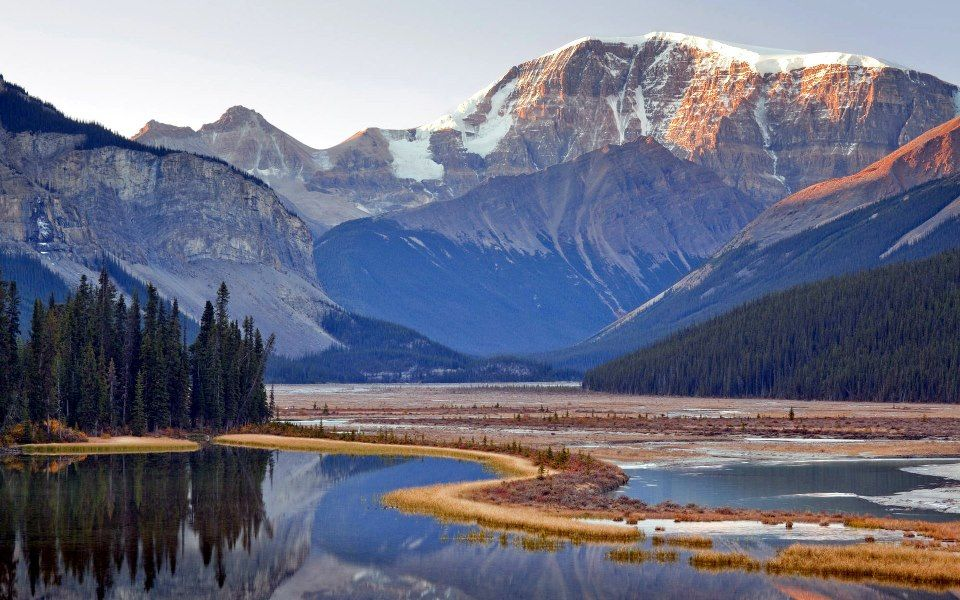 Mount Kitchener , Jasper National Park - Alberta