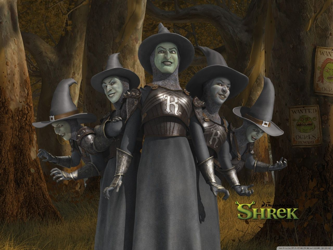 During The 1500 S Witches Were Hunted They Were Prey To Humans Who Sought Justice However In Modern Media Such As Shrek Shrek Shrek Character Shrek Costume