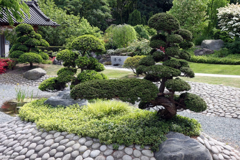 japanischer steingarten pflanzen – spinjo, Garten ideen