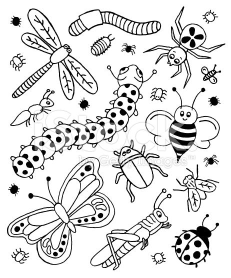A Doodle Page Of Bugs Doodle Pages Bugs Drawing Doodles