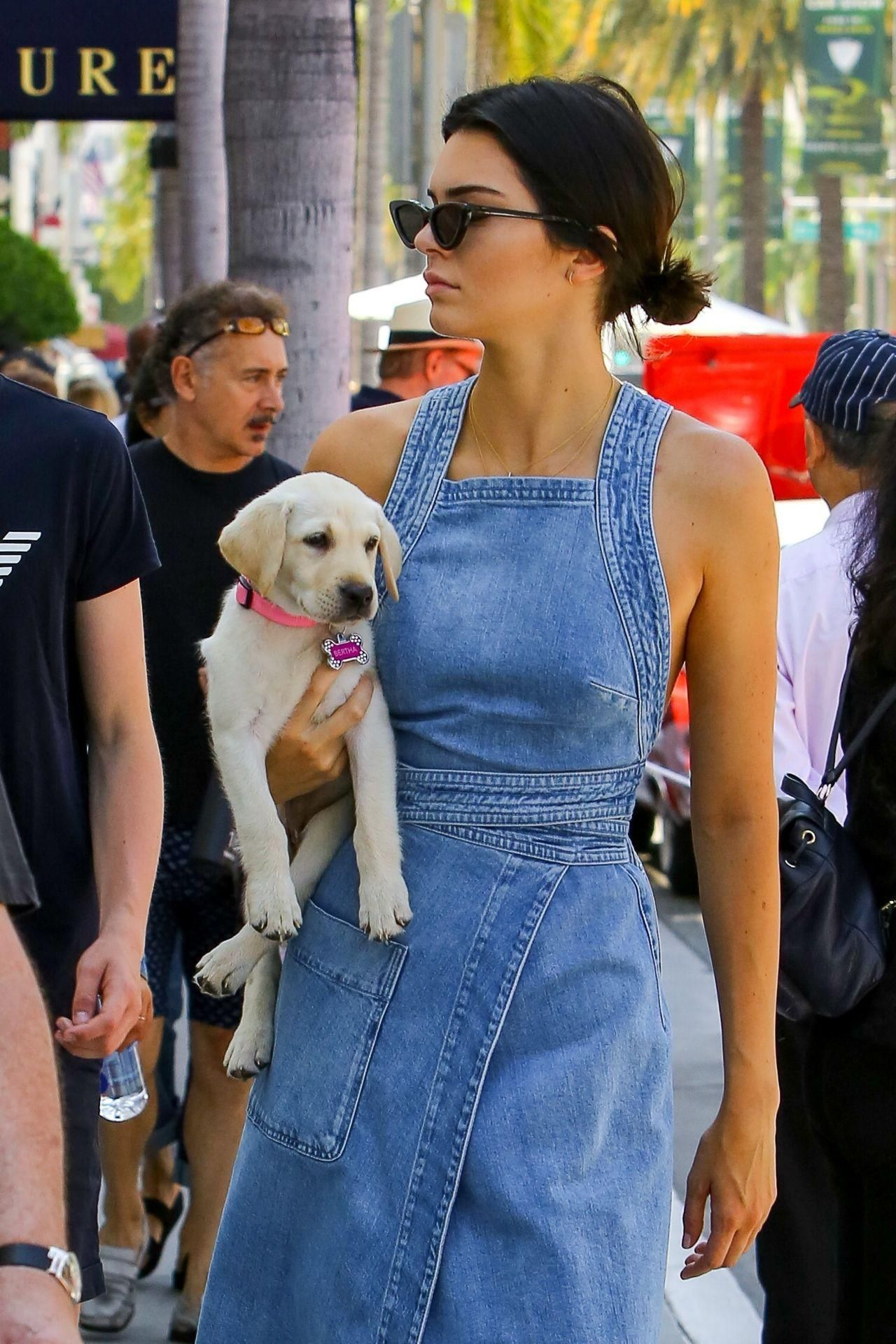 Kendall Jenner Walking With Her Cute Dog Bertha In A Denim Dress By Stella Mccartney