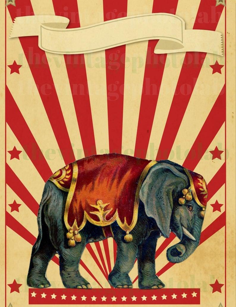Vintage Circus Digital Download Vintage Circus Images Etsy In 2021 Vintage Circus Posters Vintage Circus Vintage Poster Art
