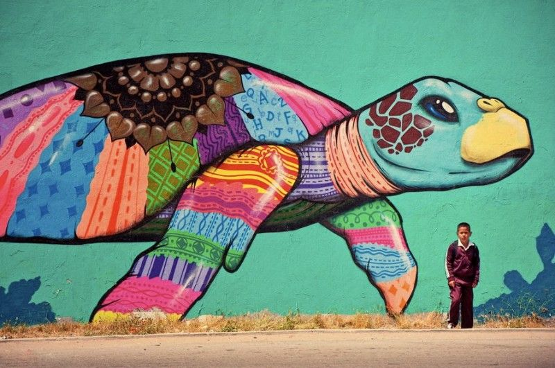 tortuga pintada en un muro de muchos colores