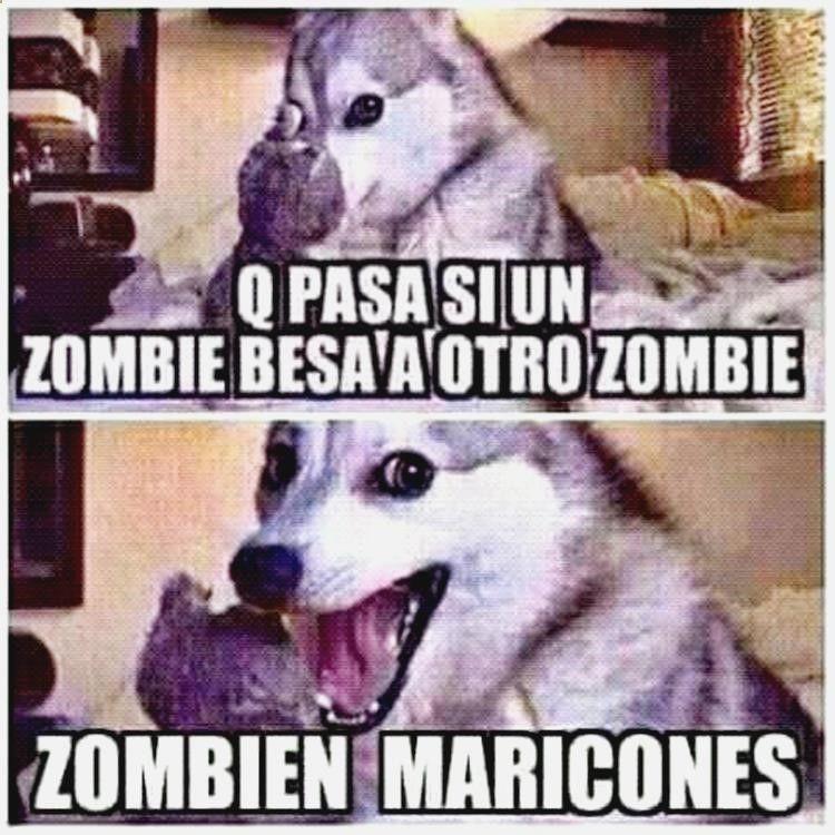 Disfruta De Gifs Interesantes Memes En Espanol En Pinterest Imagenes Graciosas One Direction Chistes Bu Memes Chistosisimos Memes Graciosos Memes Divertidos