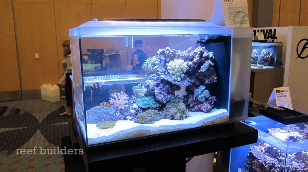 Fluval Sea Evo 12 Nano Tank Will Rock 159 Reef Builders The Reef And Marine Aquarium Blog Marine Aquarium Nano Tank Reef Tank