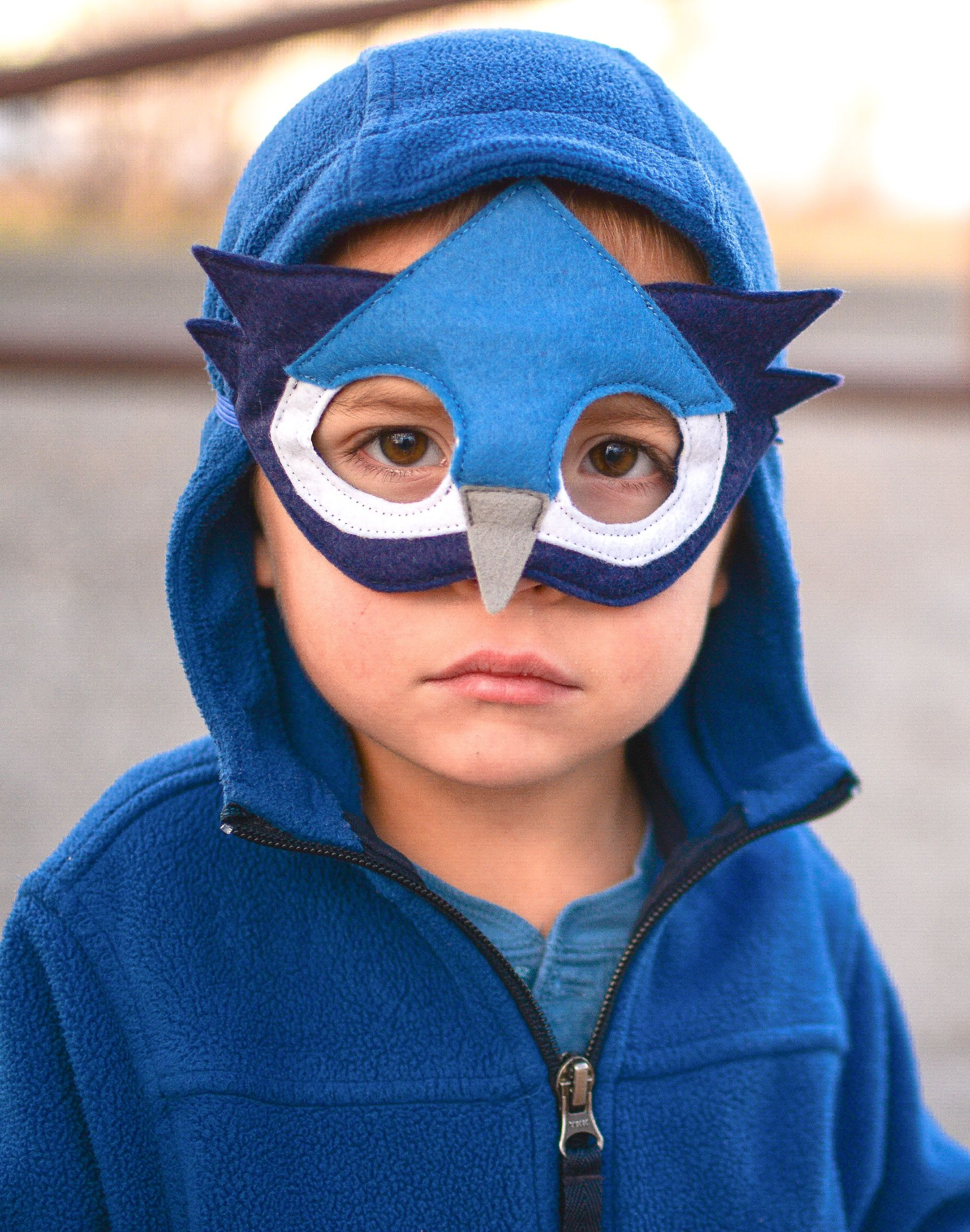 8558a3951a1c Blue jay dress up mask for boys and girls. Kids  Halloween or Carrival  costume accessory to dress up as a blue bird.